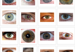 What Do Your Eyes Say About Your Personality